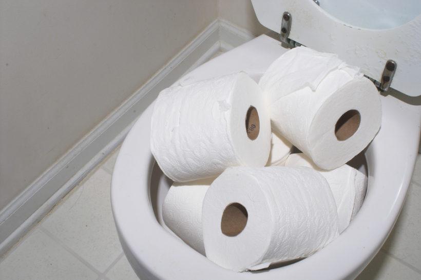 biologisch abbaubares toilettenpapier